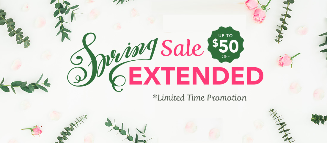 Spring Sale Extended