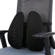 Flexispot Lumbar Support LS1B