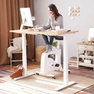 Electric Height Adjustable Standing Desk EC4