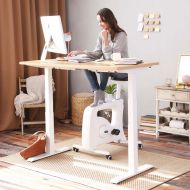 Electric Height Adjustable Standing Desk with Rectangular Top