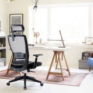 Ergonomic Office Mesh Chair with Lumbar Support H3018