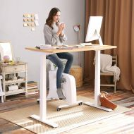 Flexispot sit-stand-move home office solution