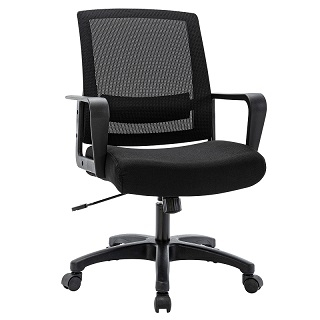 Ergonomic Task Chair 1011