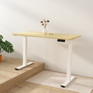 Electric Height Adjustable Standing Desk EA2L