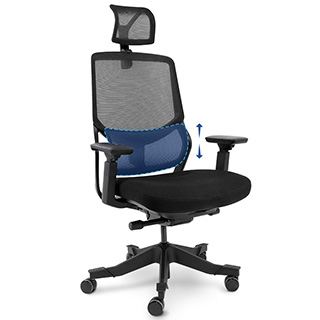 Ergonomics 3D Lumber Support Office Chair OC10B/OC10G