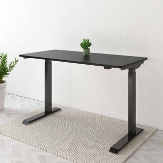 "Vici Electric Quick-Install Height Adjustable Desk EC9 - 48"" W"