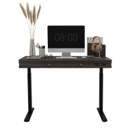 Theodore Standing Desk UD1B with blank back ground