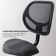 Sit2Go 2-in-1 Fitness Chair comfortable sitting experience
