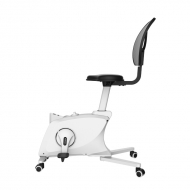 Sit2Go 2-in-1 Fitness Chair