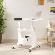 Home office All-in-One Desk Bike/Bike Workstation V9