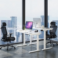 Vici Electric Quick-Install Height Adjustable Desk - 48