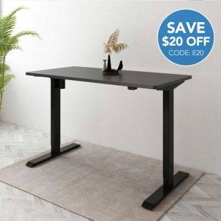 Flexispot Value Electric Height Adjustable Desk EC1—Best Seller