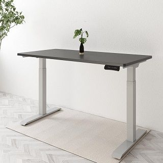 Next-day delivery CA丨Seiffen Electric Height Adjustable Standing Desk with Rectangular Top