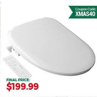 Intelligent Bidet Toilet Seat ESB101/201