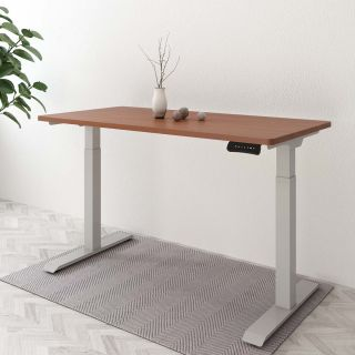 Electric Height Adjustable Standing Desk: Dual Motor Economical Option EC3/EC4