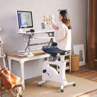 Flexispot sit-stand desk total solution