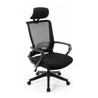 Ergonomic Office Mesh Chair with Headrest 1903BP