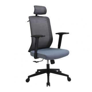 FlexiSpot Ergonomic Office Chair