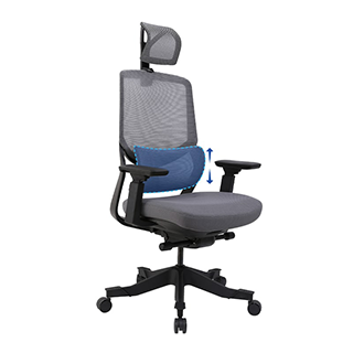 Soutien Ergonomic Office Chair