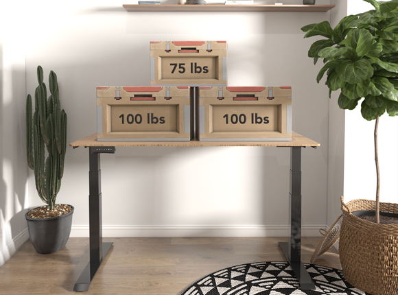 pro series standing desk dual-motor lifting system