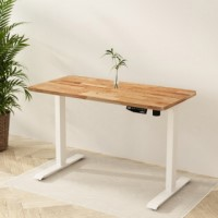 Willow Solid Wood Standing Desk