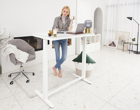 FlexiSpot Comhar vs Costco Electrocnic Standing Desk : Which one is right for You?
