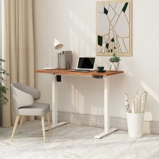 Why you need the Seiffen Laminated Standing Desk (Eco & Pro)