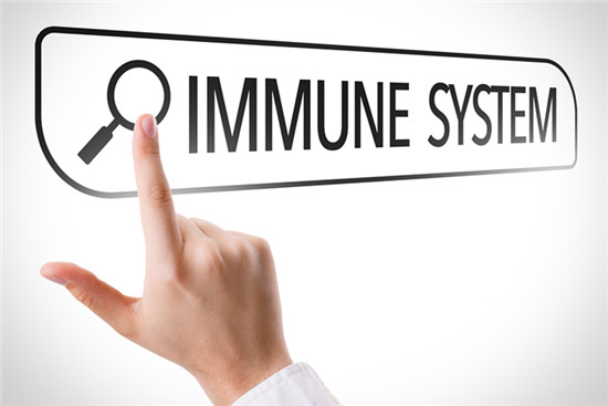 Immune System written in search bar