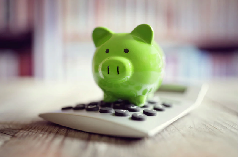The Wise Spender's Piggy Bank