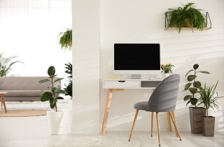 Aesthetics and Productivity can go hand in hand with the Accent Chair 005