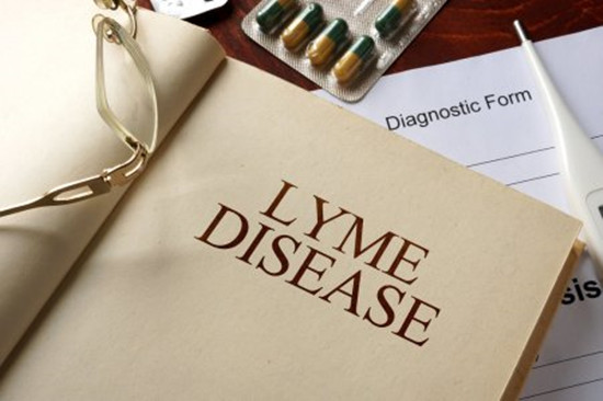 A book is showing Lyme disease