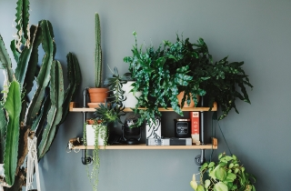Ideas On How To Use Floating Shelves