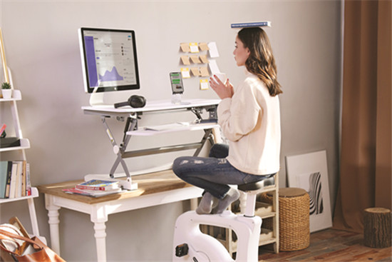 Flexispot desk riser and desk bike
