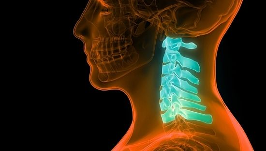 How (and Why) To Protect Your Cervical Spine Nerves