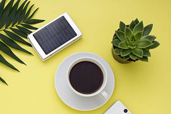Going Green at Work: Your Guide to Sustainability in the Workplace