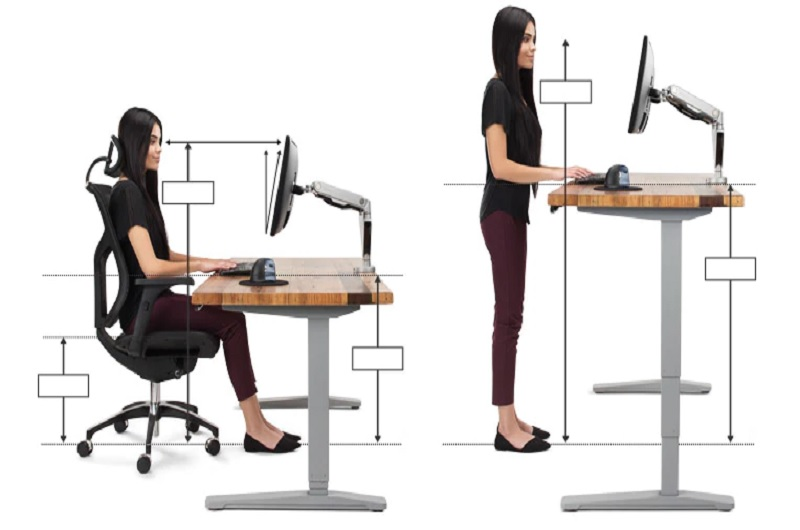A employees demonstarting between a sitting and standing desk
