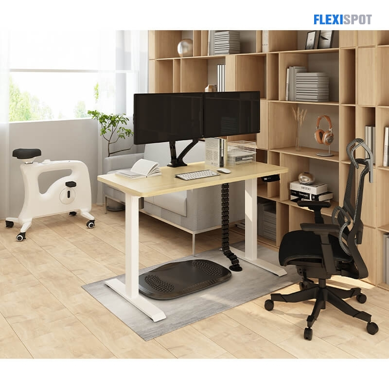 flexispot combo products