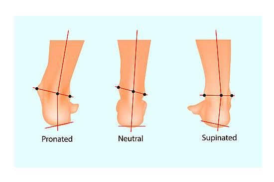 Understanding Your Feet: A Beginner's Guide to Pronation and Supination