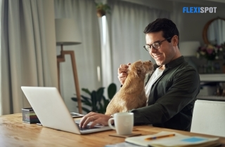 man working with his dog