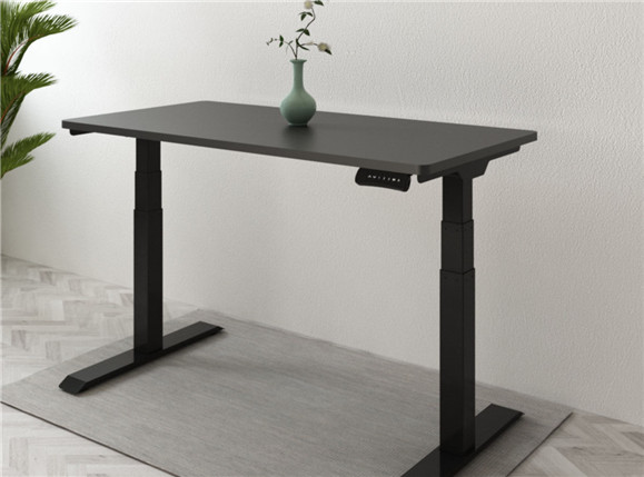 Introduce the whole standing desk