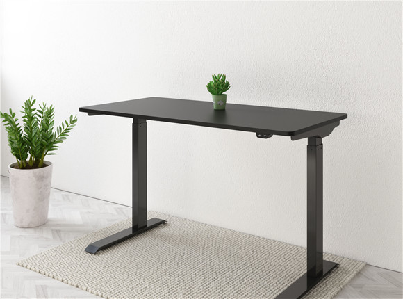 Vici Electric Quick-Install Height Adjustable Desk EC9