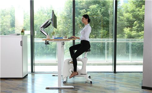 flexispot sit-stand-move solution move