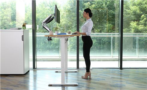 flexispot sit-stand-move solution stand